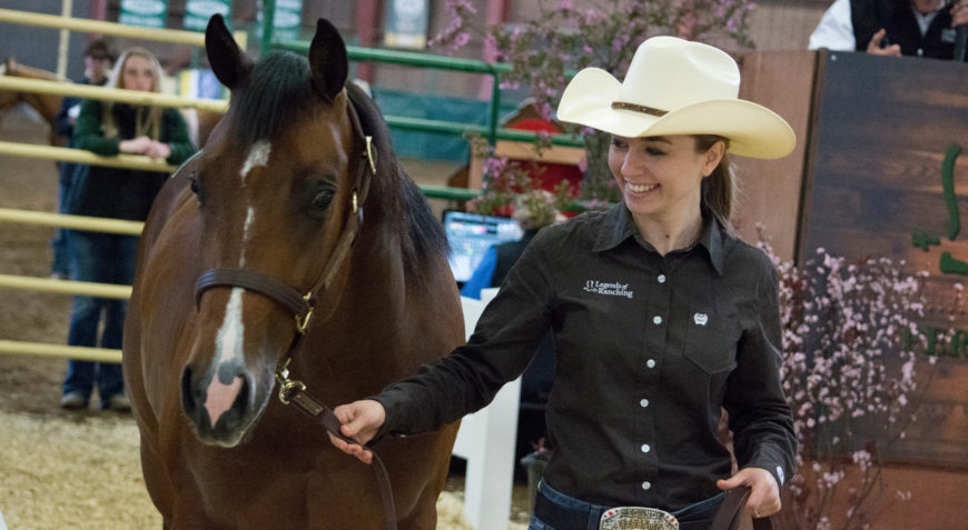 An Equine Sciences student leads her horse at the Legends of Ranching horse sale.
