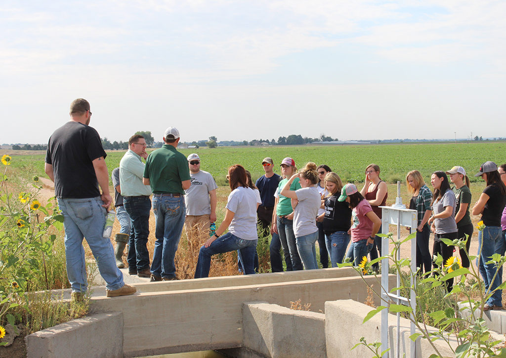 students learning about irrigation in a field