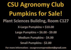 Agronomy Pumpkins flyer