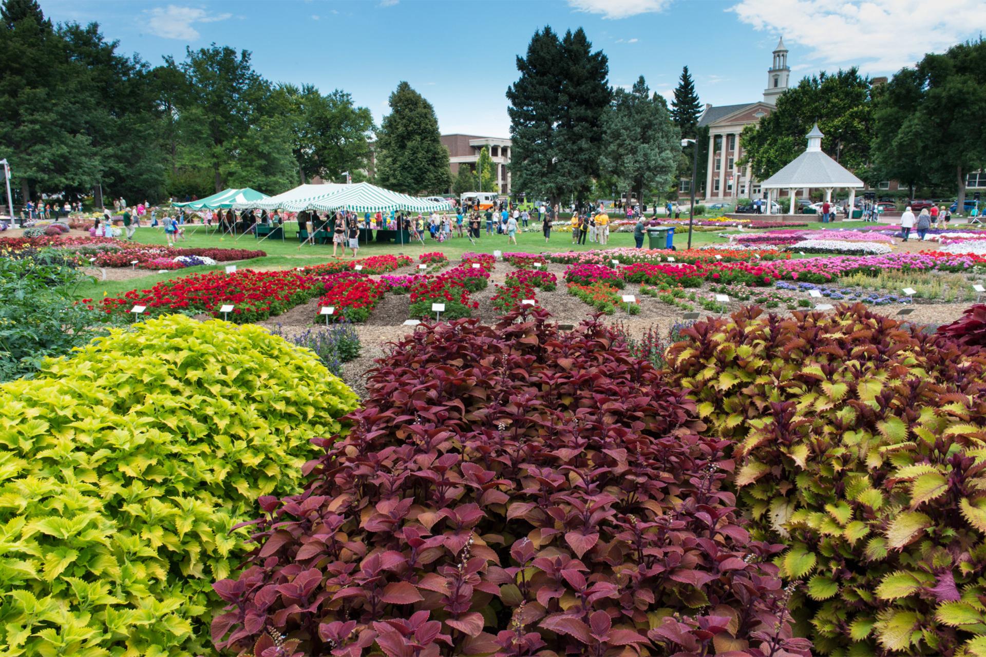 CSU Trial Gardens