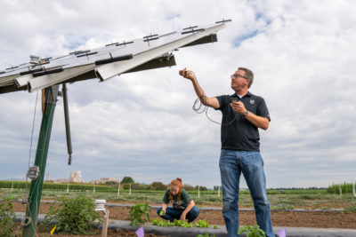 Researchers take measurements under solar panels
