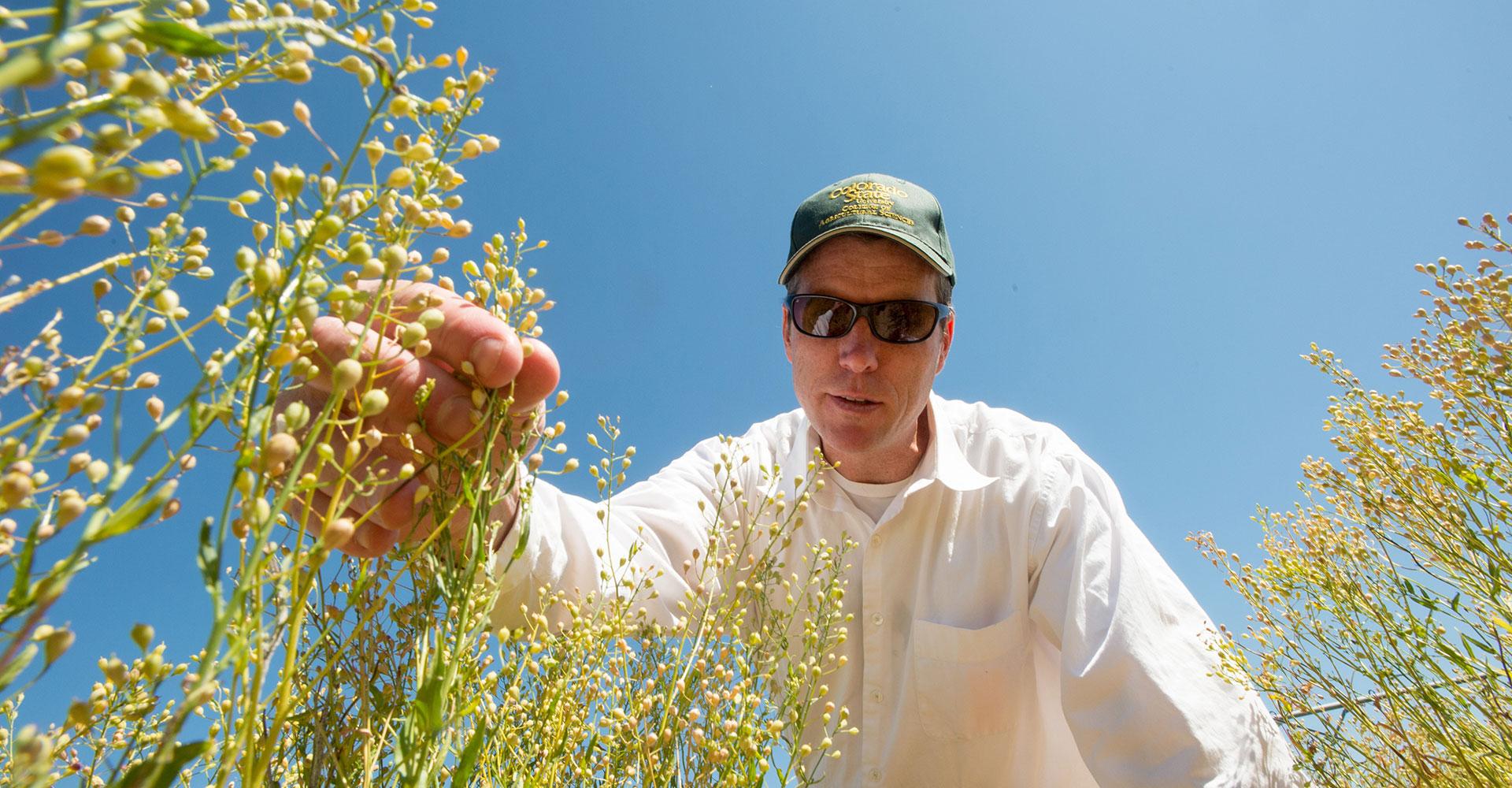 John mckay with plants